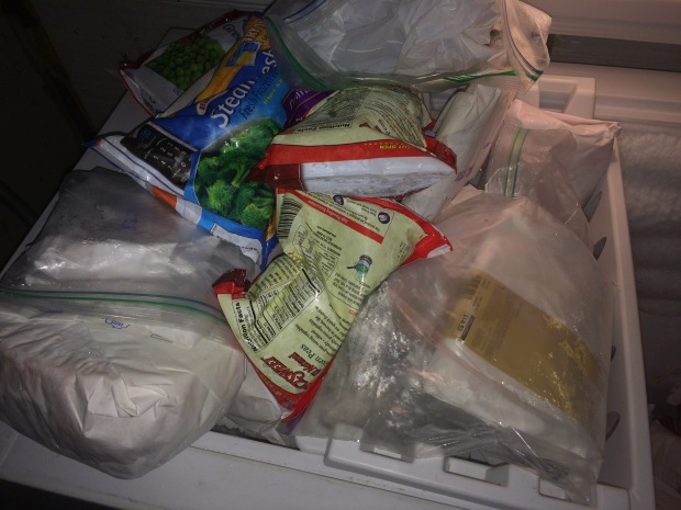 This is what the freezer looked like.